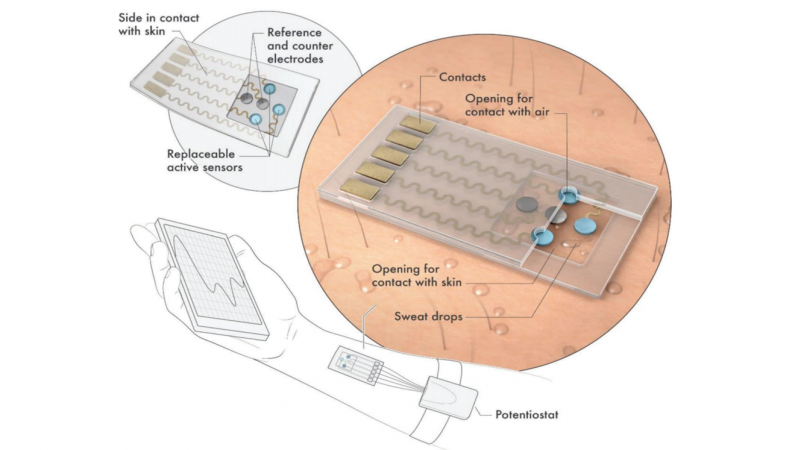 A MXene‐Based Wearable Biosensor System for High‐Performance In Vitro Perspiration Analysis