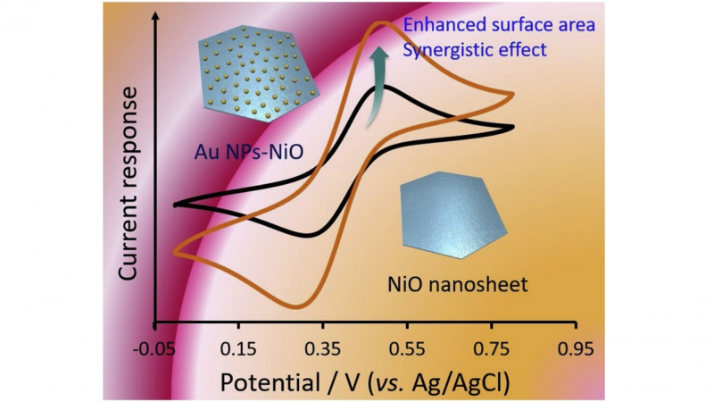One-step synthesis and decoration of nickel oxide nanosheets with gold nanoparticles by reduction method for hydrazine sensing application